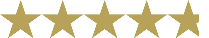 4.8 gold stars